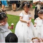 【義兄嫁】義兄の結婚式準備の時に、新婦がフラワーガールに適齢のお嬢ちゃんがイナイ!結婚式の時には絶対って夢だったのに!と狂乱し、幼稚園児の息子にかつらとドレスで女装させてフラワーガールして欲しいと言い出したので即断り……