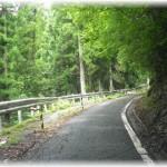 【因果応報】山中でヒッチハイクしてた昔いじめっ子だった女を気付かずに車に乗せた。以前のようにバカにしてきたので、山道に置き去りにしてやった結果・・・