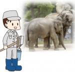 背中で若手をリードするベテランの象